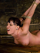 Naked Fetish, Dana DeArmond, is stripped, bound, and forced to obey.