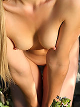 Tits Nipples, Hot Babes of MPL Studios