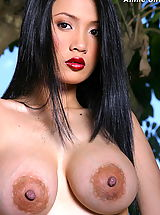 Puffy Nipples, Asian Women annie chui 13 areola stockings swollen vagina